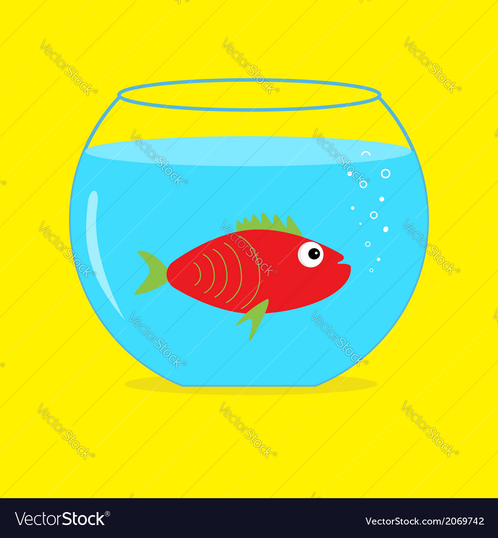 Red fish in the aquarium card vector | Price: 1 Credit (USD $1)