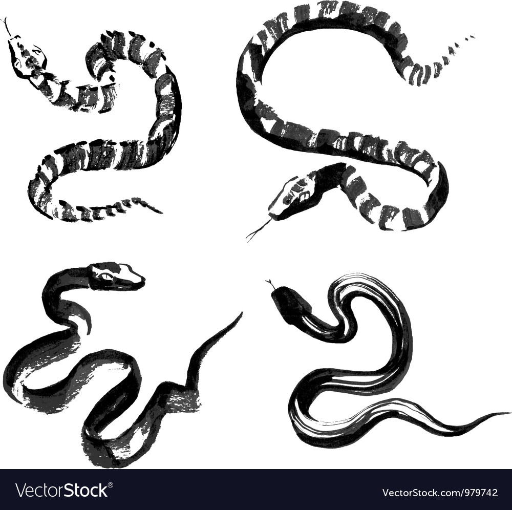 Snakes in traditional chinese ink painting vector | Price: 1 Credit (USD $1)