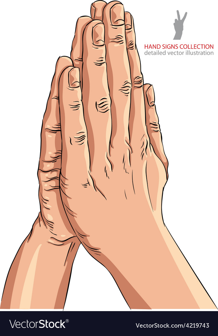 Praying hands detailed vector | Price: 1 Credit (USD $1)