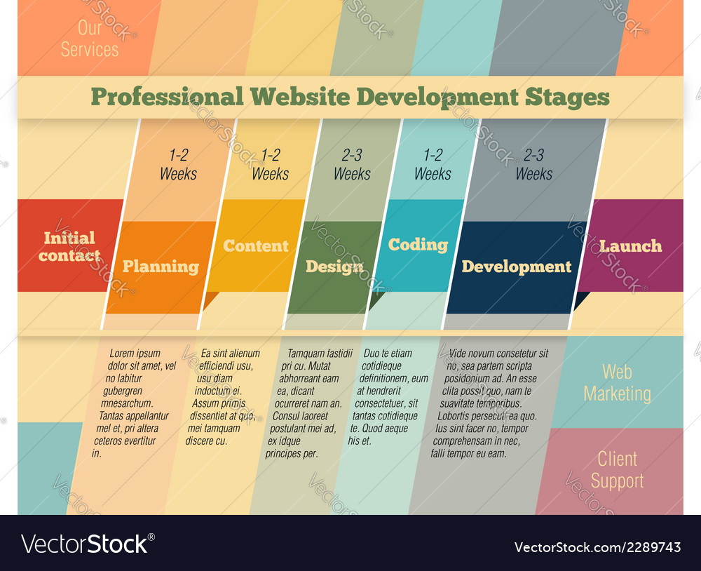 Stages in web design and development vector | Price: 1 Credit (USD $1)