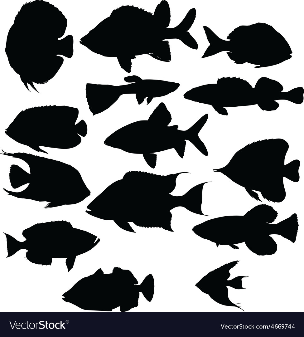 Silhouettes of fish vector | Price: 1 Credit (USD $1)