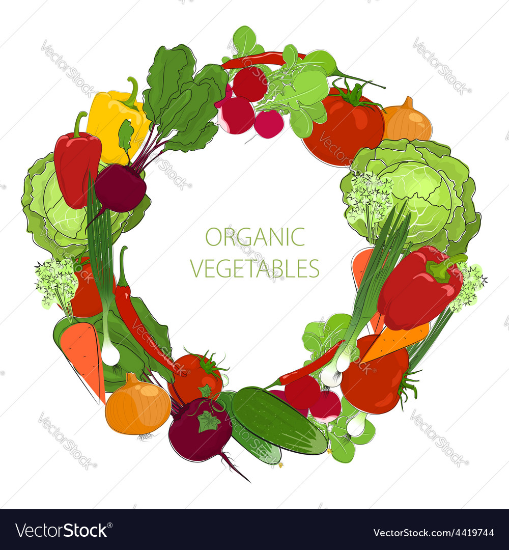 Wreath from fresh raw vegetables vector | Price: 1 Credit (USD $1)