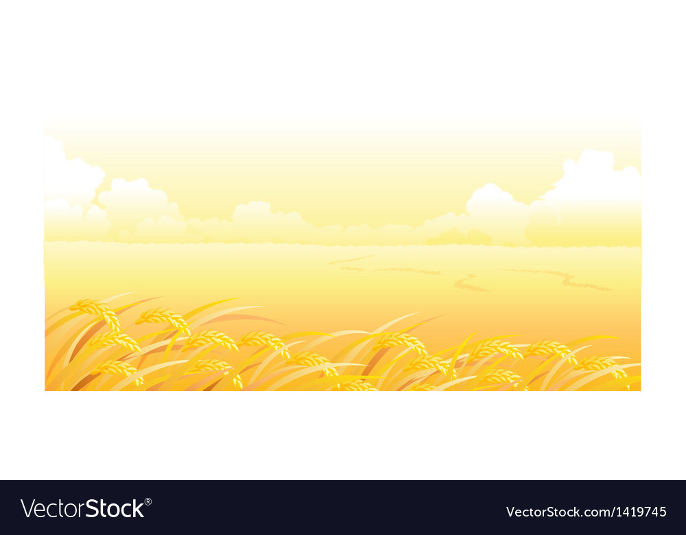 Wheat field and landscape vector | Price: 1 Credit (USD $1)