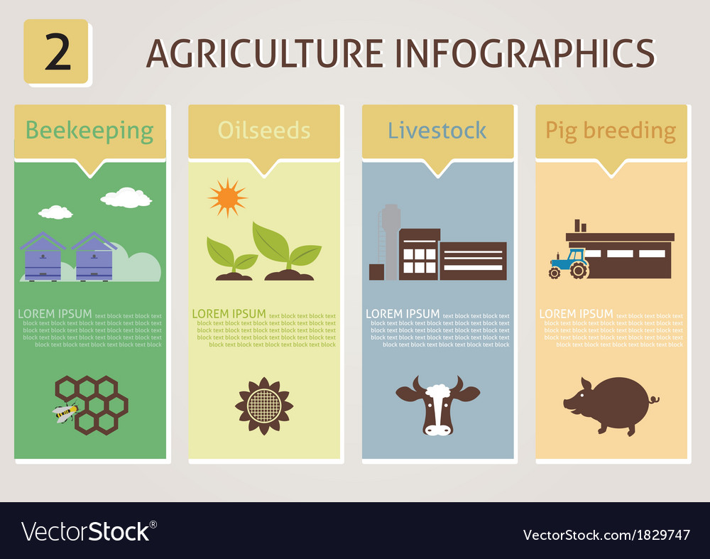 Agriculture infographics vector | Price: 1 Credit (USD $1)
