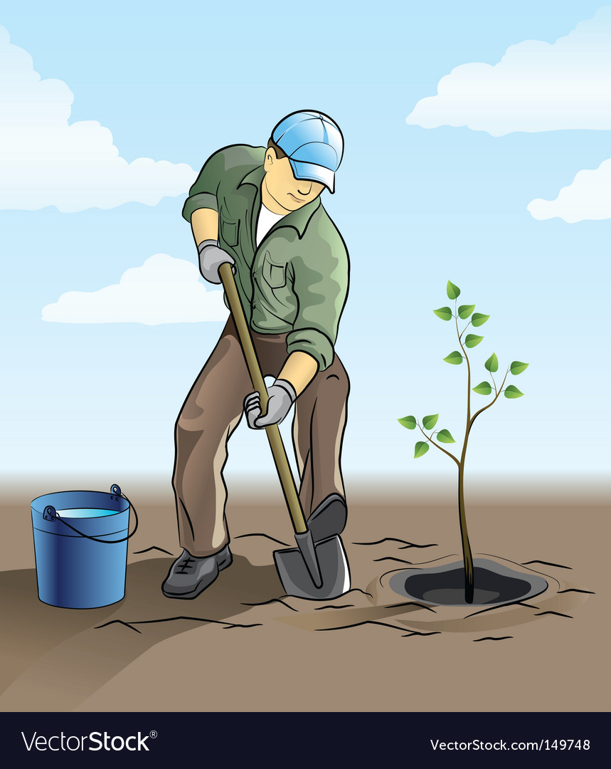 Gardener planting tree vector | Price: 3 Credit (USD $3)