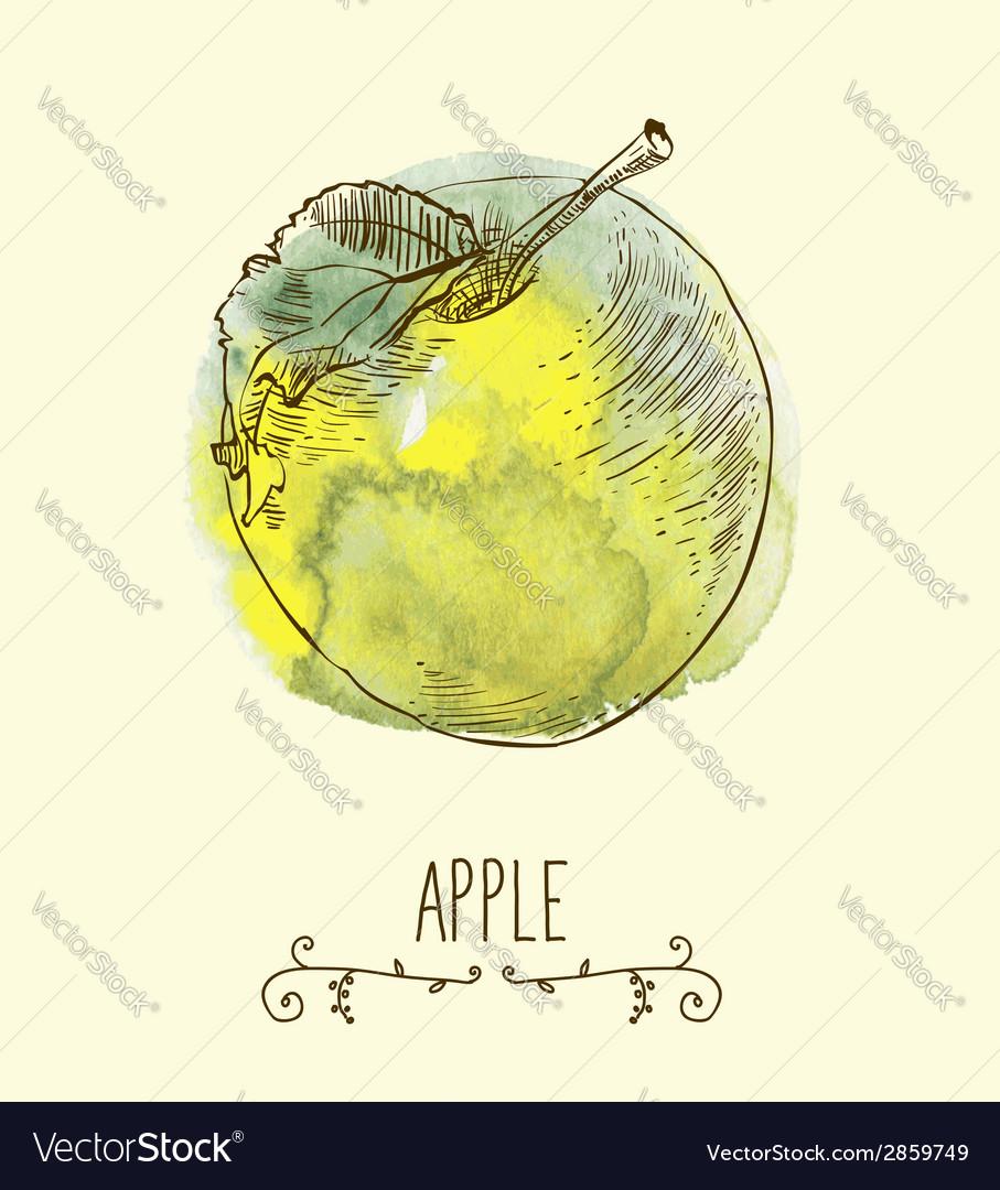 Fresh useful eco-friendly apple vector | Price: 1 Credit (USD $1)