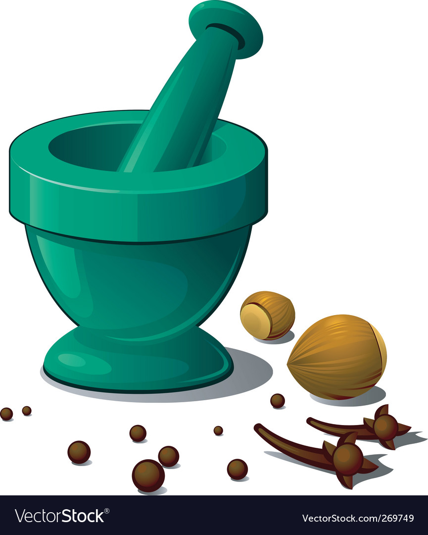 Mortar and pestle vector | Price: 1 Credit (USD $1)