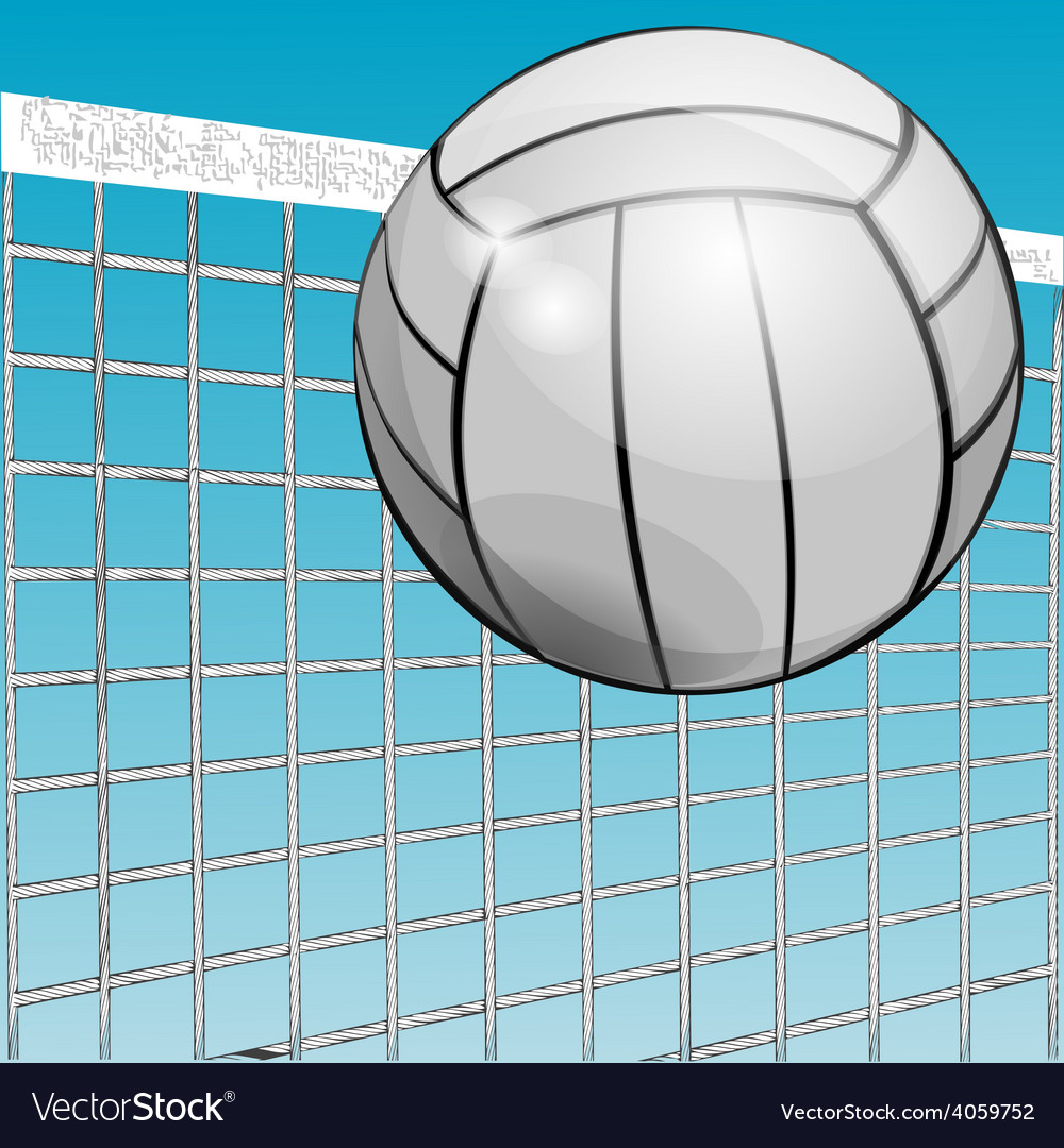 Ball and net vector | Price: 1 Credit (USD $1)