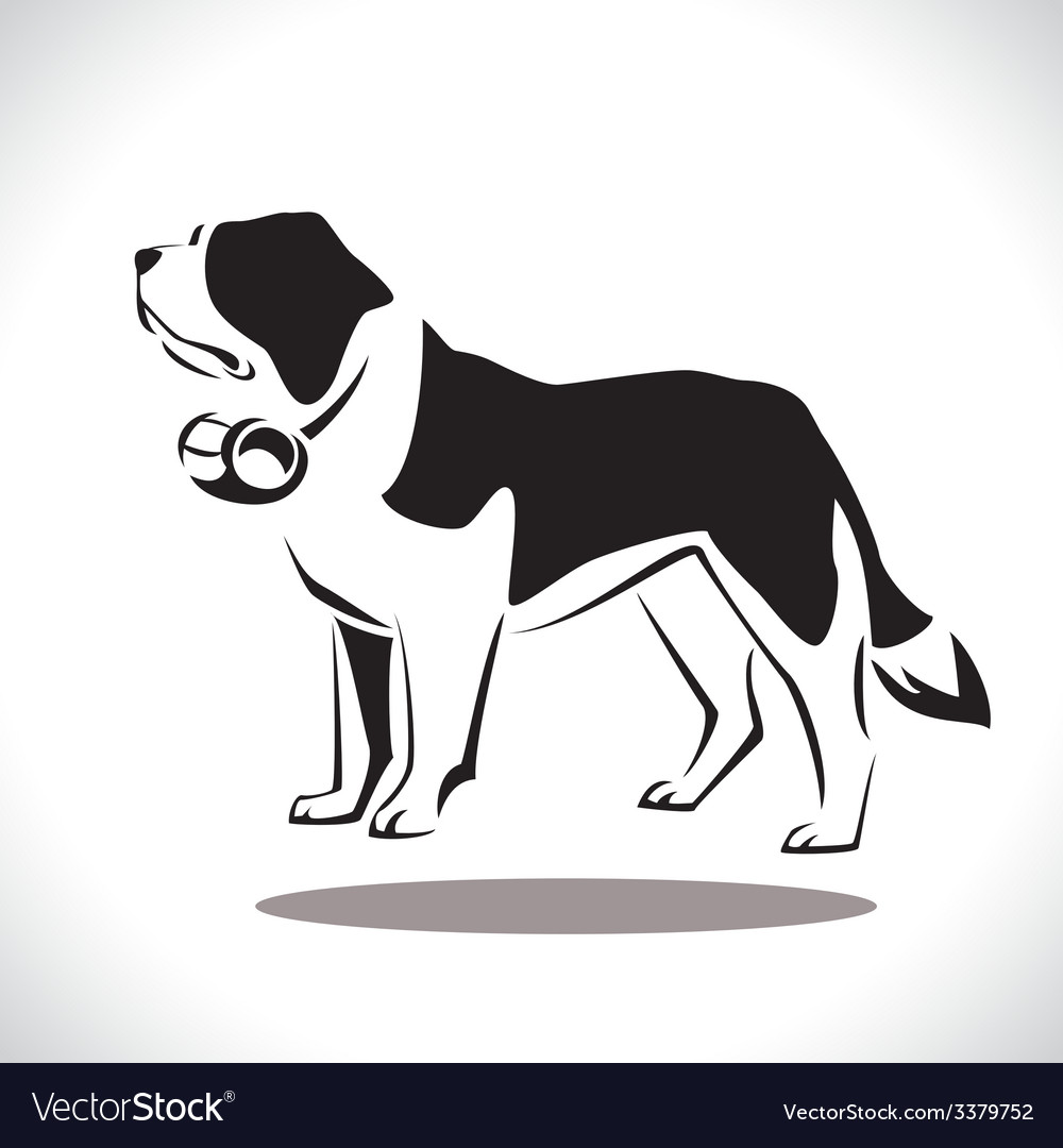Saint bernard 2 vector | Price: 1 Credit (USD $1)