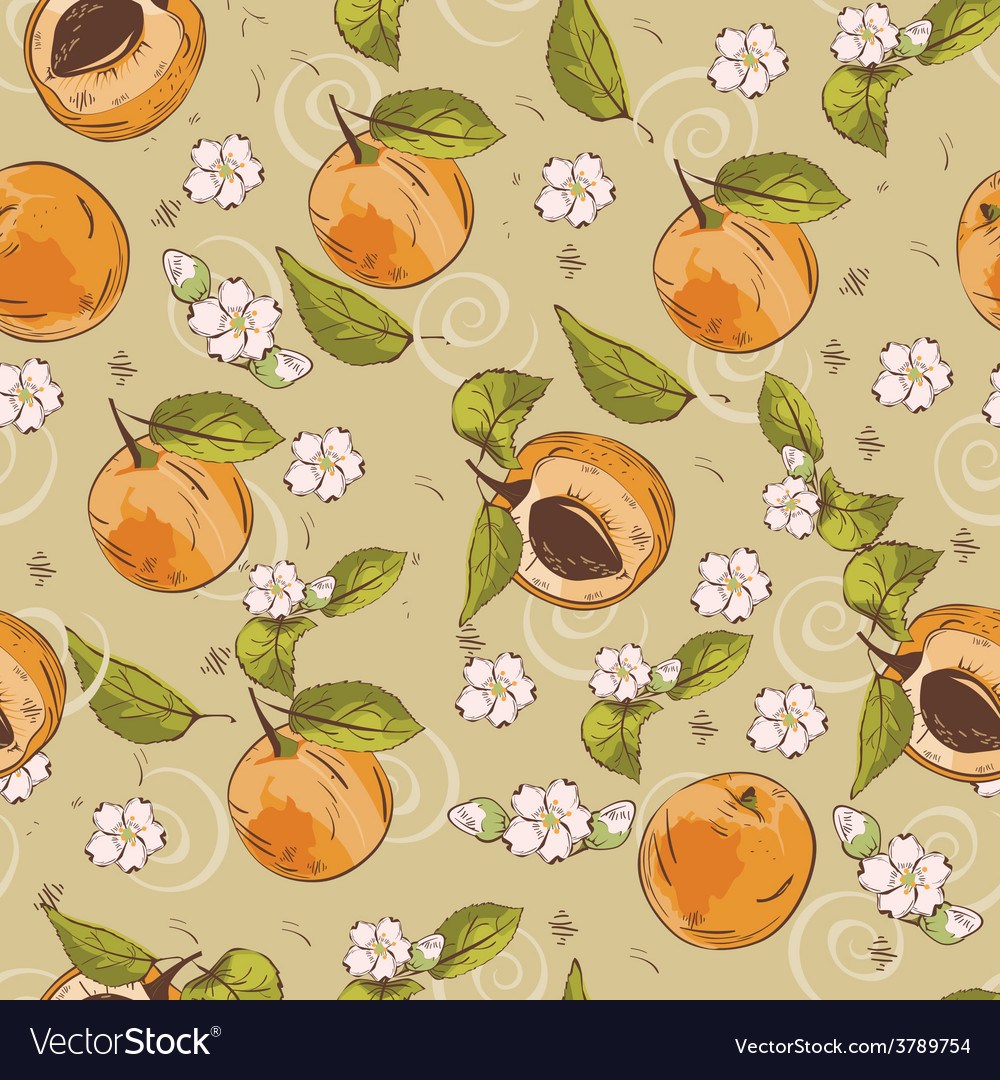 Apricot pattern vector | Price: 1 Credit (USD $1)