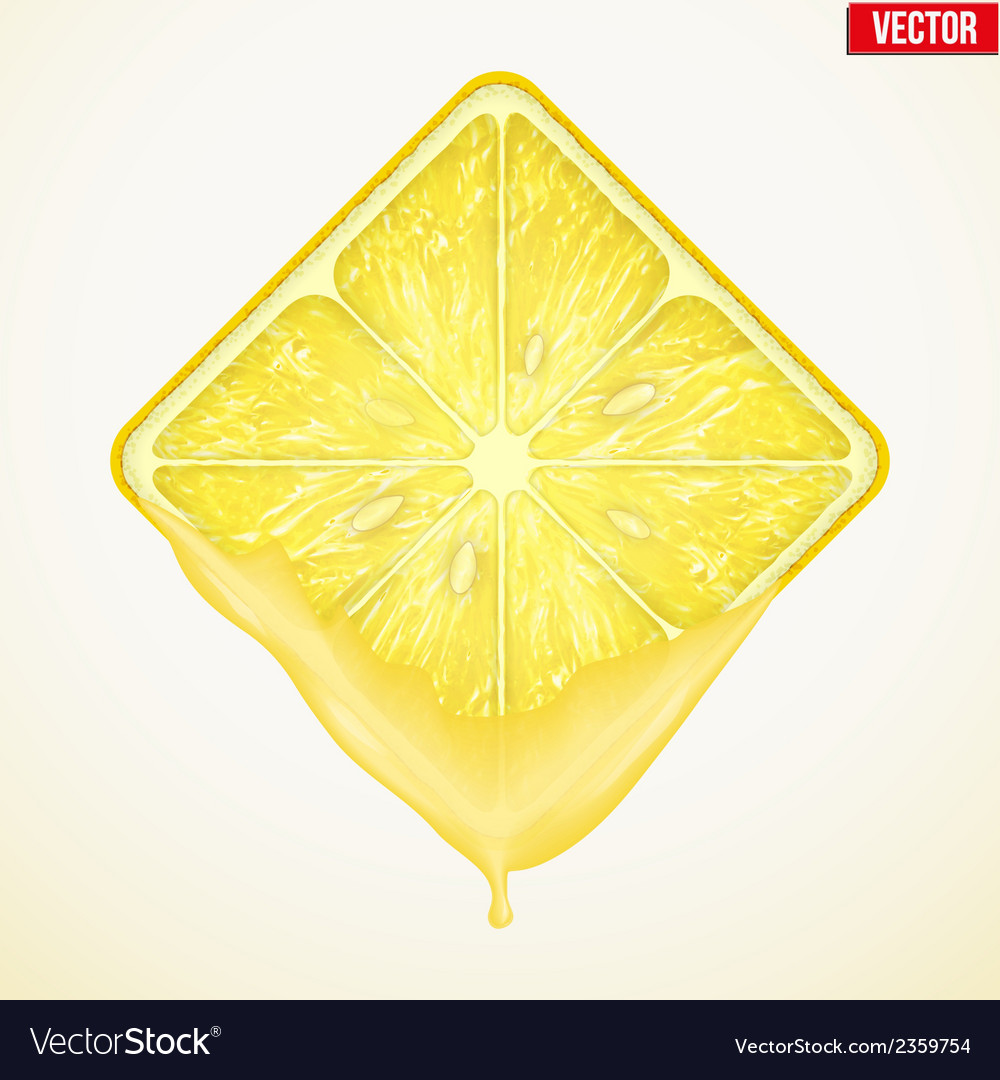 Square slice of lemon with fresh juice vector | Price: 1 Credit (USD $1)