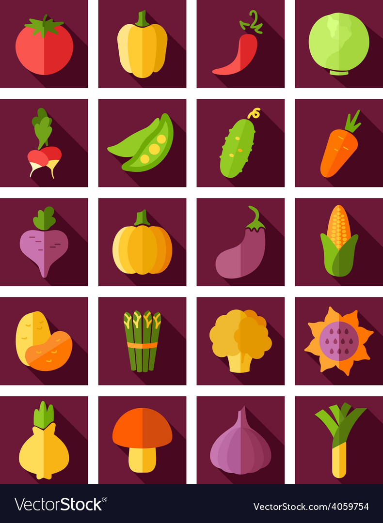 Vegetable flat icon with long shadow vector | Price: 1 Credit (USD $1)