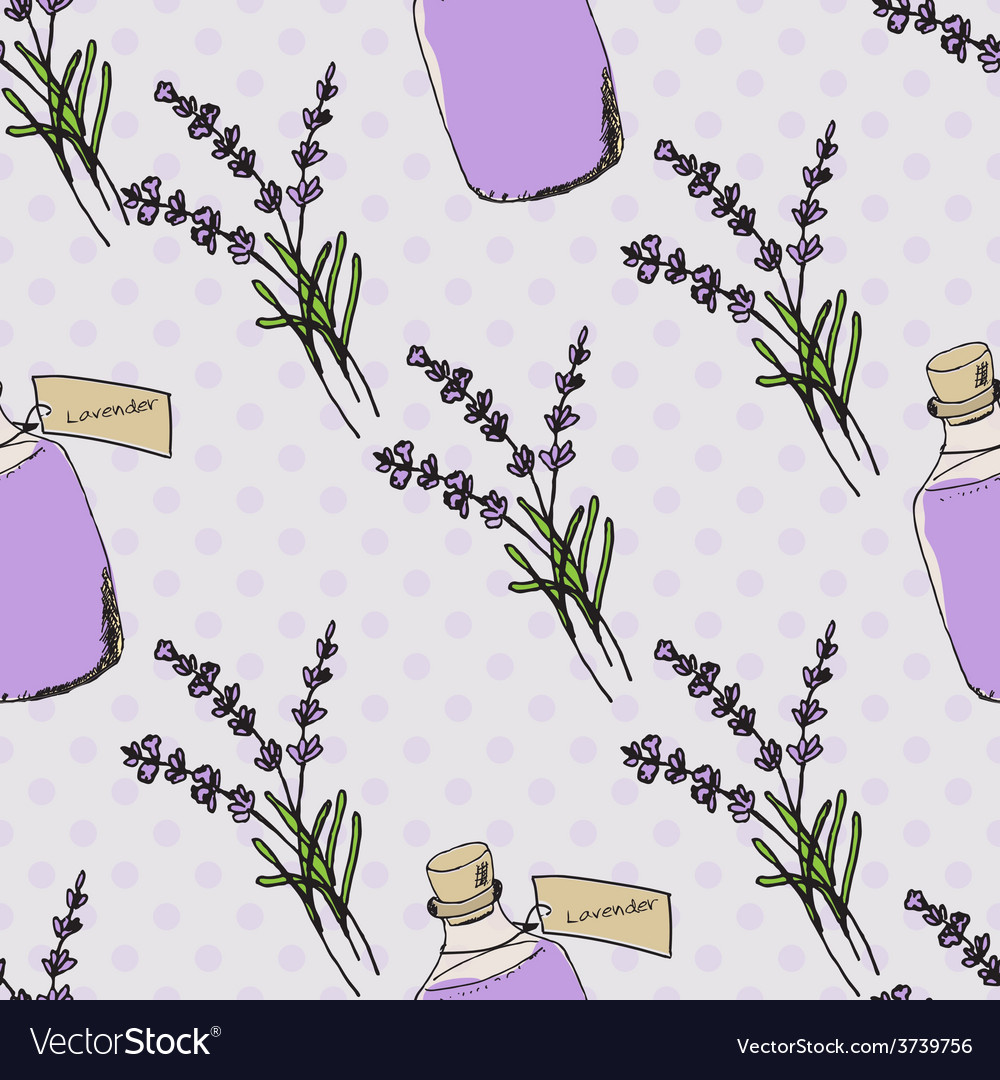 Health and nature collection lavender vector | Price: 1 Credit (USD $1)