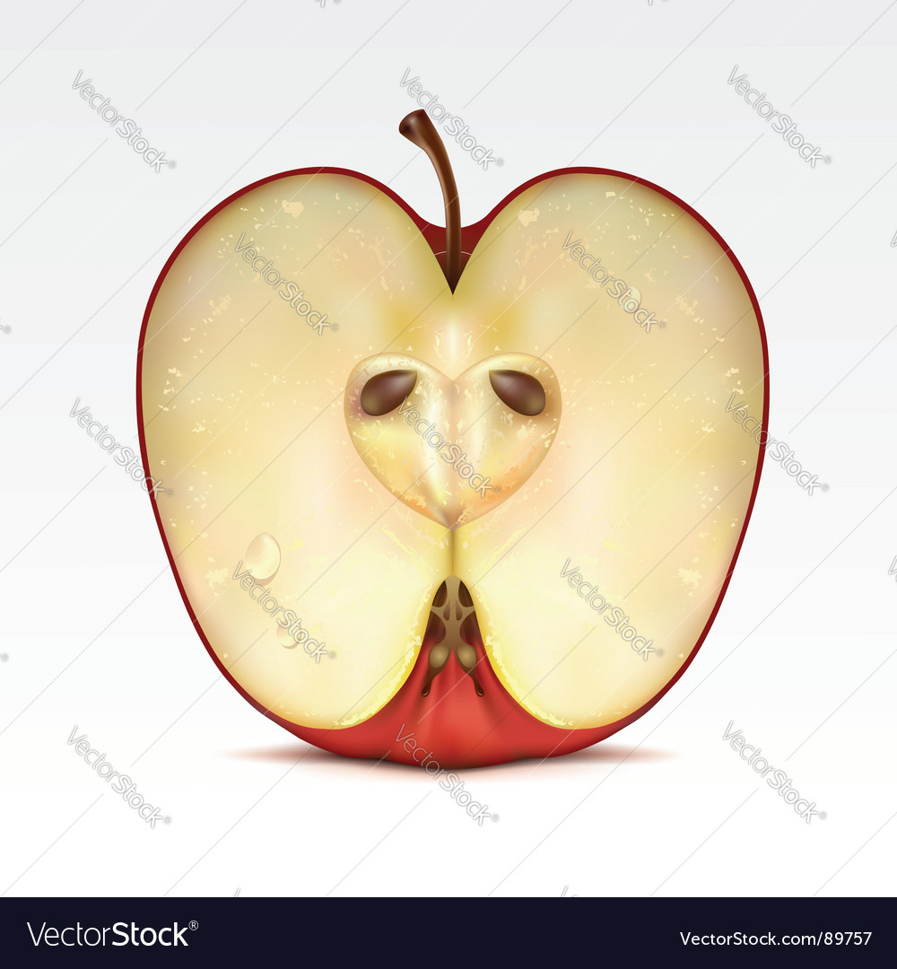 Apple vector   Price: 3 Credit (USD $3)