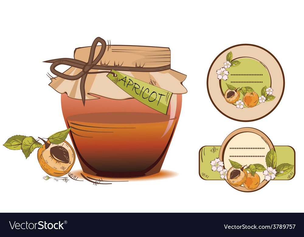 Apricot labels vector | Price: 1 Credit (USD $1)