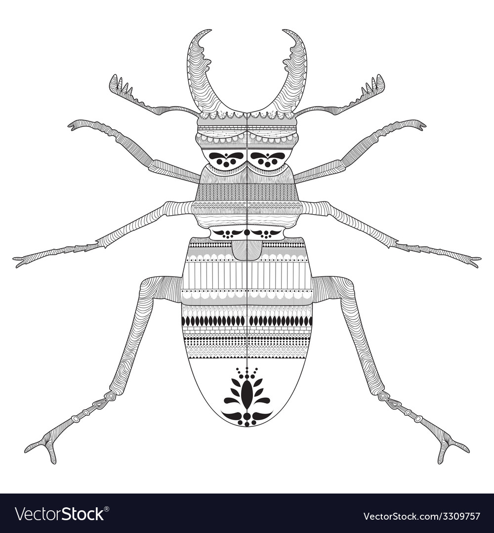 Hand drawing a beetle with elements of ornament vector | Price: 1 Credit (USD $1)