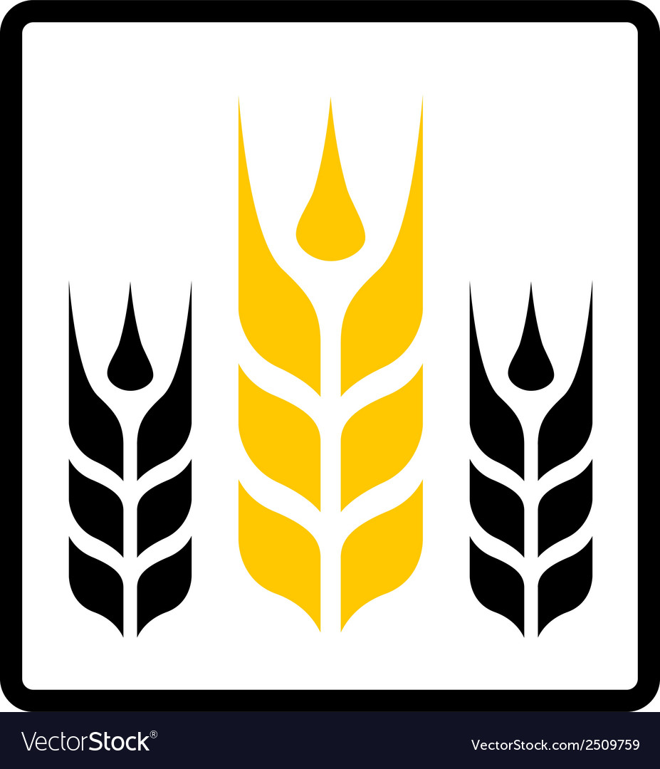 Isolated wheat and darnel symbol vector | Price: 1 Credit (USD $1)