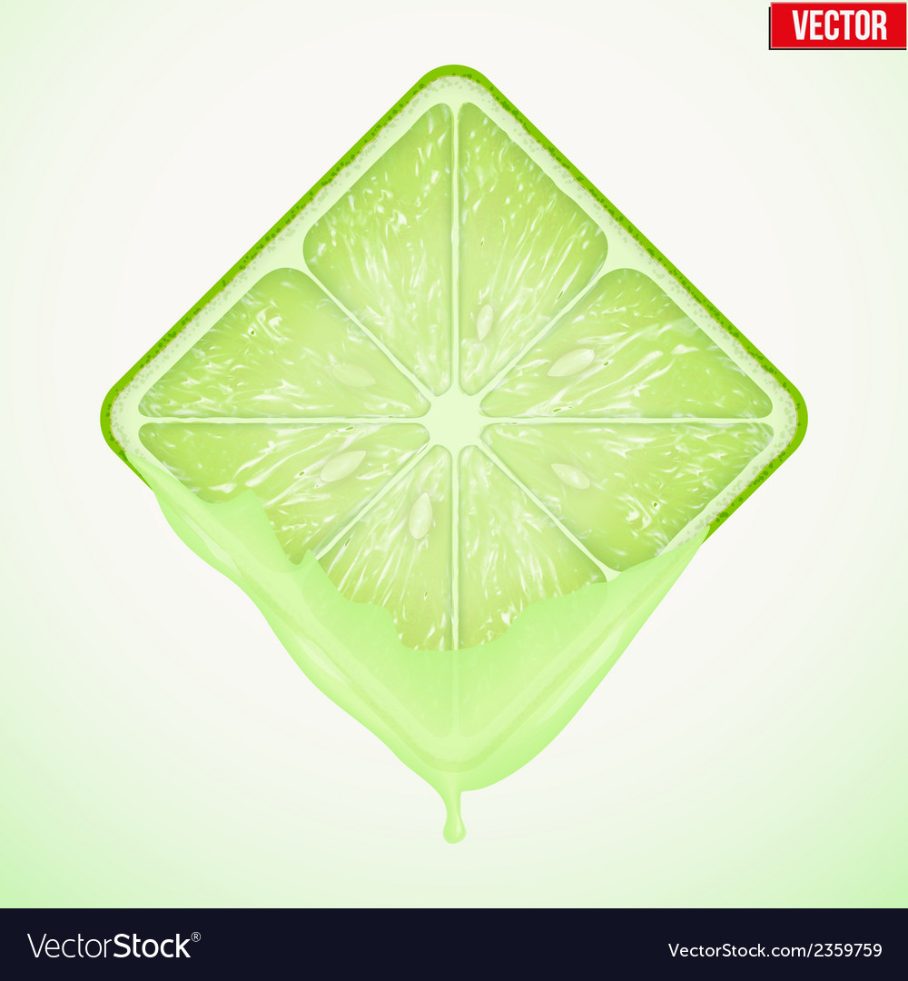 Square slice of lime with fresh juice vector | Price: 1 Credit (USD $1)