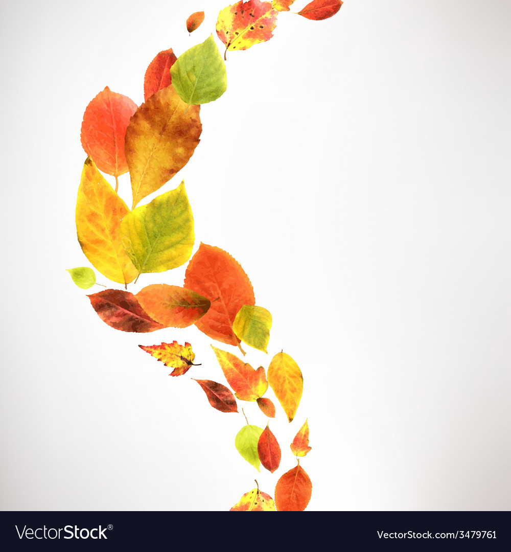 Autumn wallpaper vector | Price: 1 Credit (USD $1)