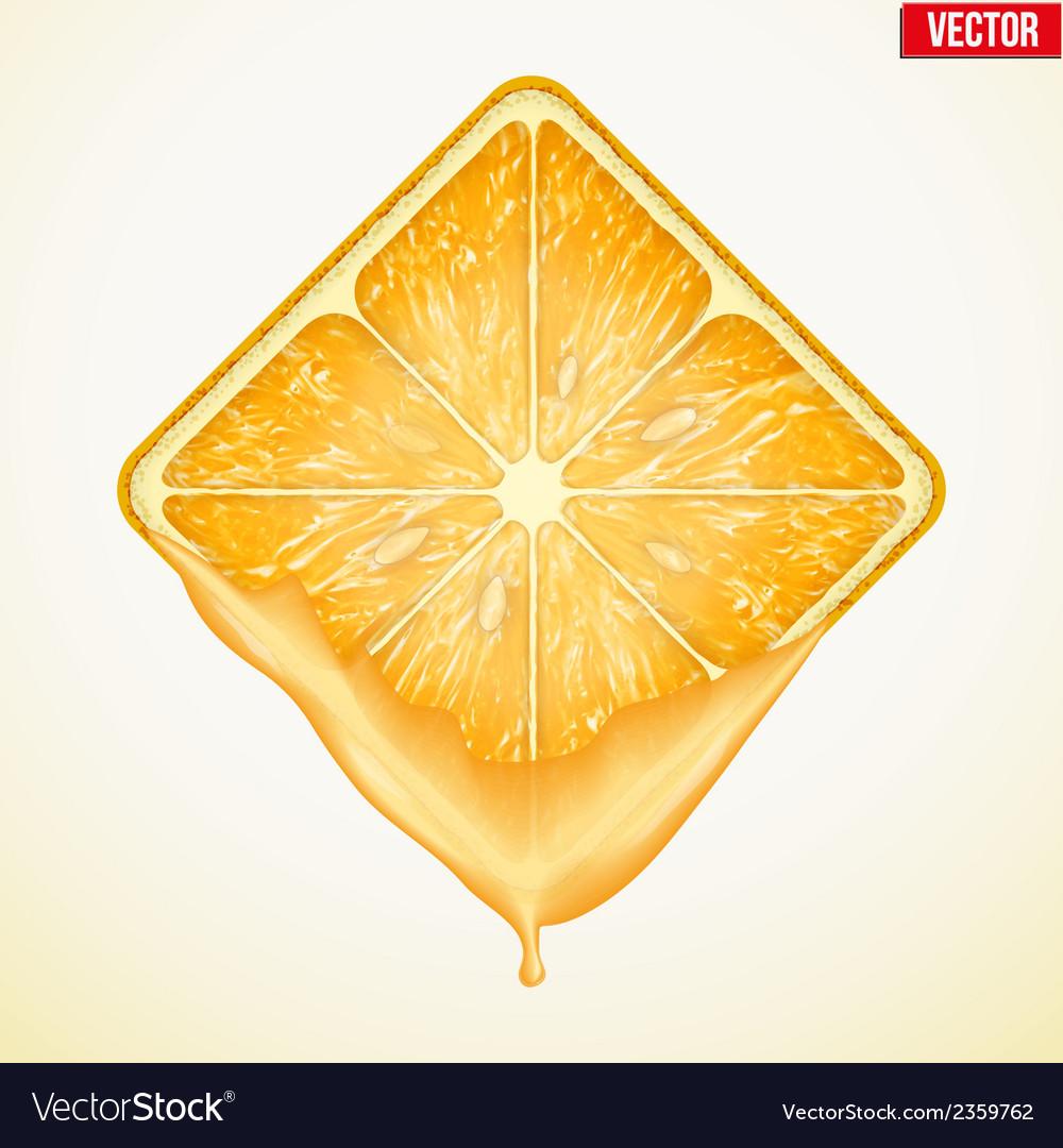 Square slice of orange with fresh juice vector | Price: 1 Credit (USD $1)
