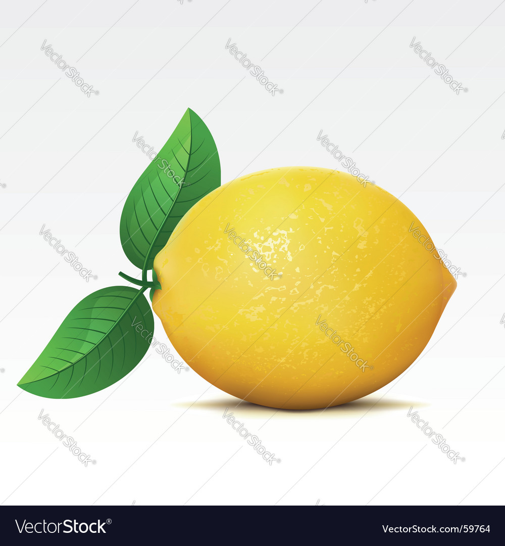 Lemon vector | Price: 3 Credit (USD $3)