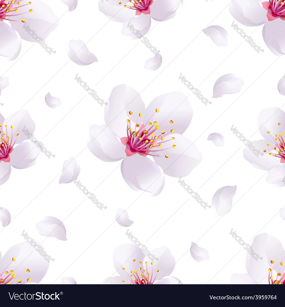 Spring background seamless pattern with sakura vector | Price: 1 Credit (USD $1)
