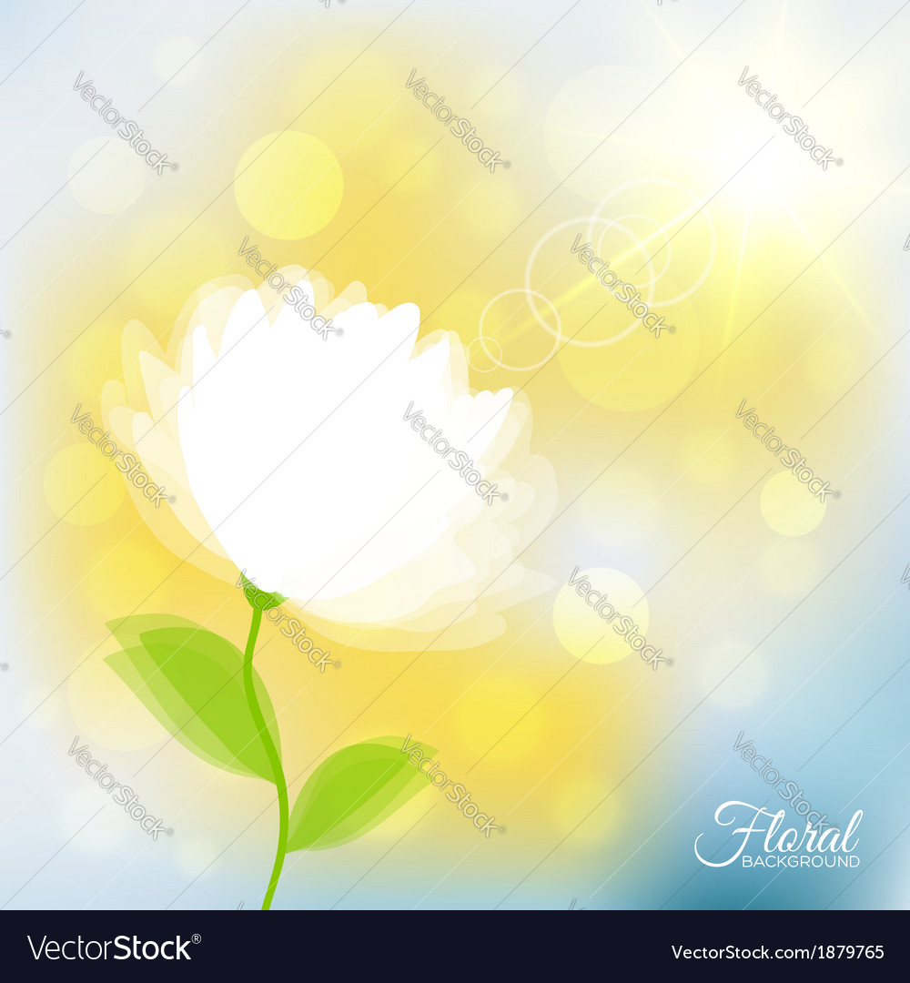 Background with transparent delicate flower vector | Price: 1 Credit (USD $1)