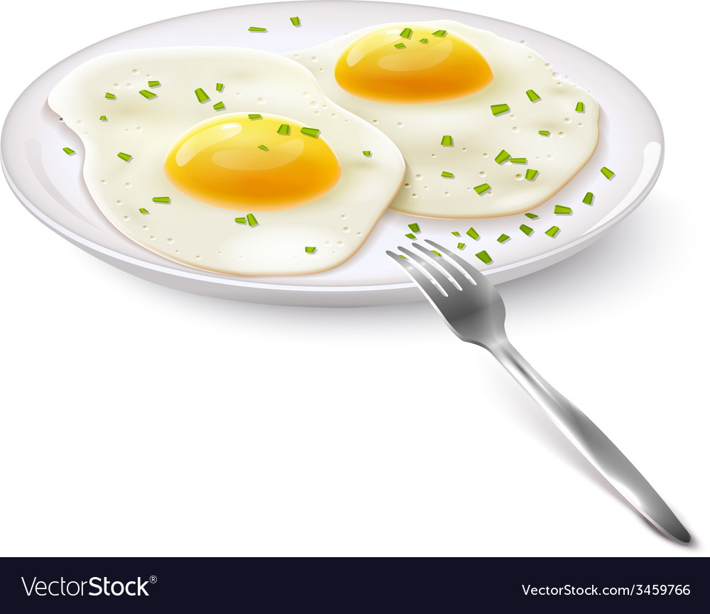 Fried eggs realistic vector | Price: 1 Credit (USD $1)