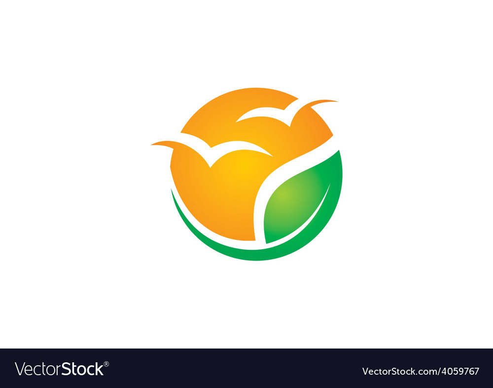 Eco seagul beach abstract logo vector | Price: 1 Credit (USD $1)