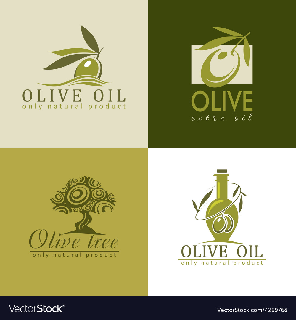 Olive and olive oil vector | Price: 1 Credit (USD $1)