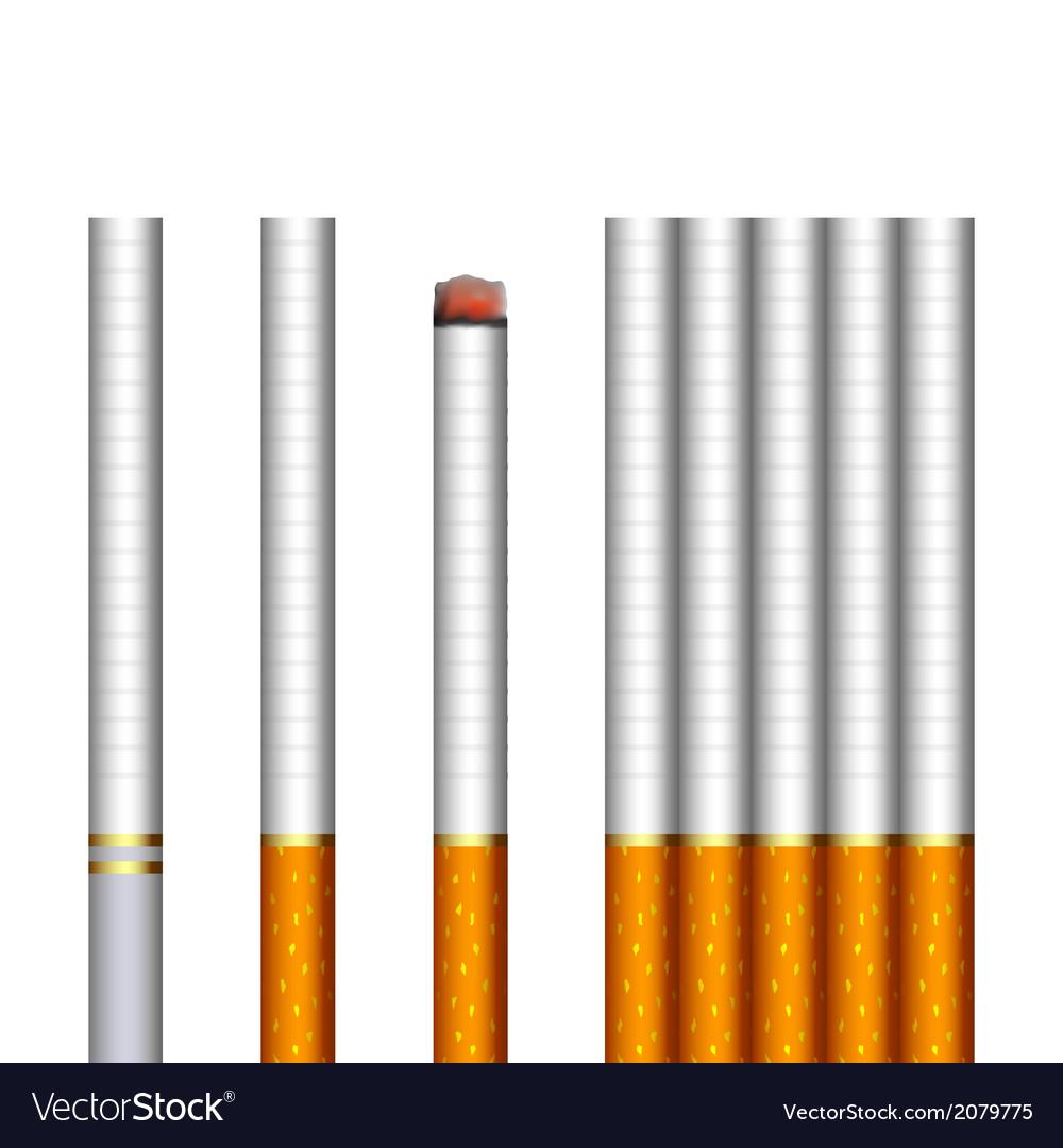 Cigarettes vector | Price: 1 Credit (USD $1)