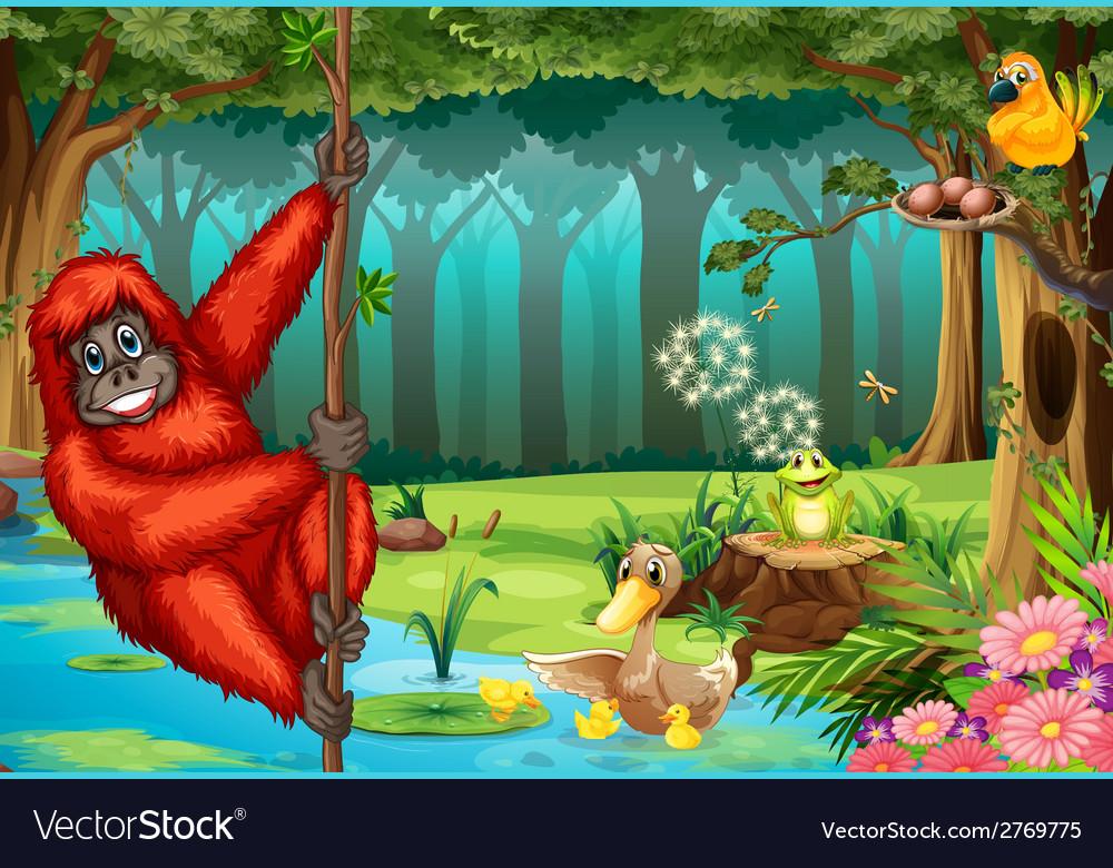 Orangutan in jungle vector   Price: 1 Credit (USD $1)