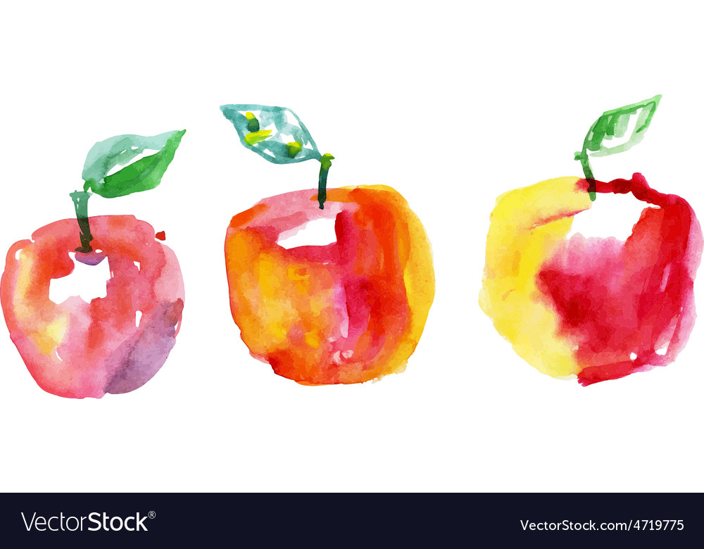 Watercolor drawing apples vector | Price: 1 Credit (USD $1)