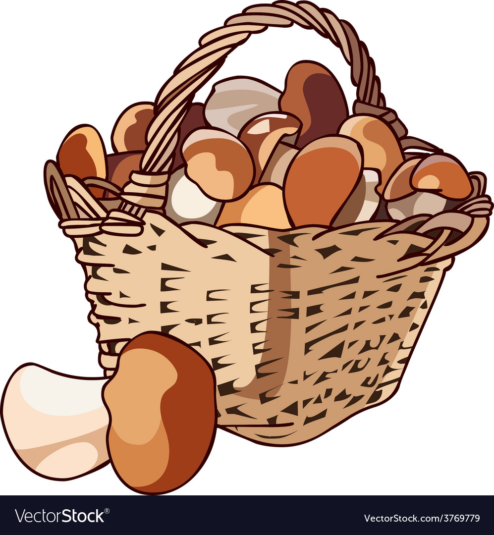 Basket with mushrooms vector   Price: 1 Credit (USD $1)