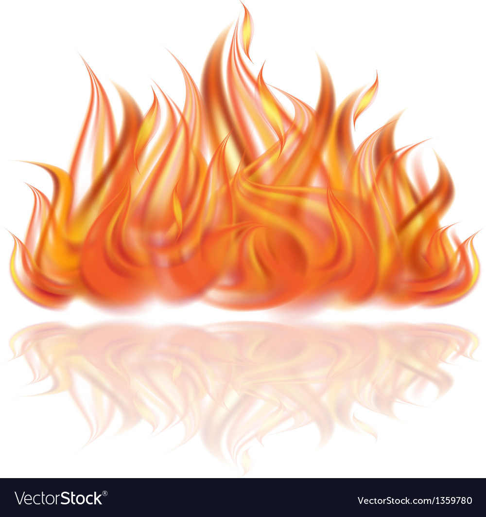 Fire on white background vector | Price: 1 Credit (USD $1)