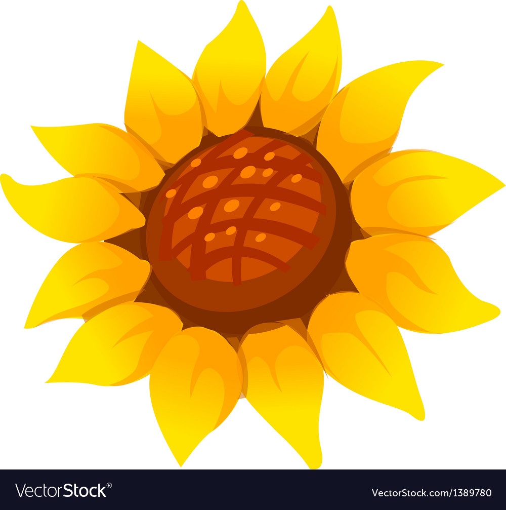 Icon sunflower vector | Price: 1 Credit (USD $1)