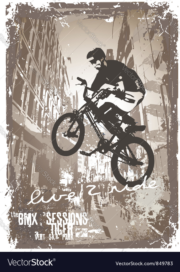 Street biker bmx vector | Price: 1 Credit (USD $1)