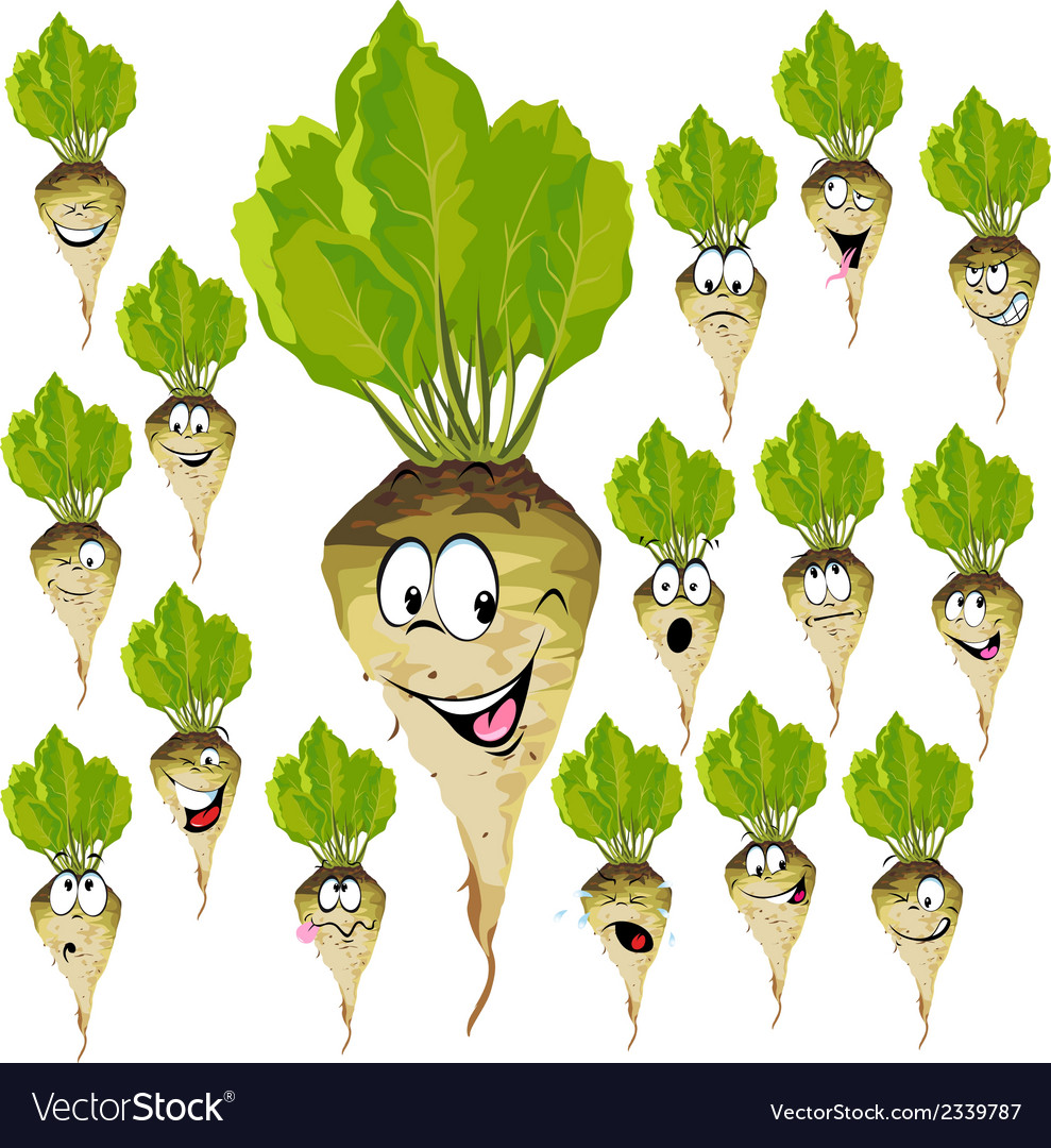 Sugar beet cartoon with many expressions vector | Price: 1 Credit (USD $1)