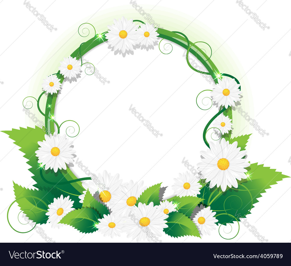 Chamomile frame vector | Price: 1 Credit (USD $1)