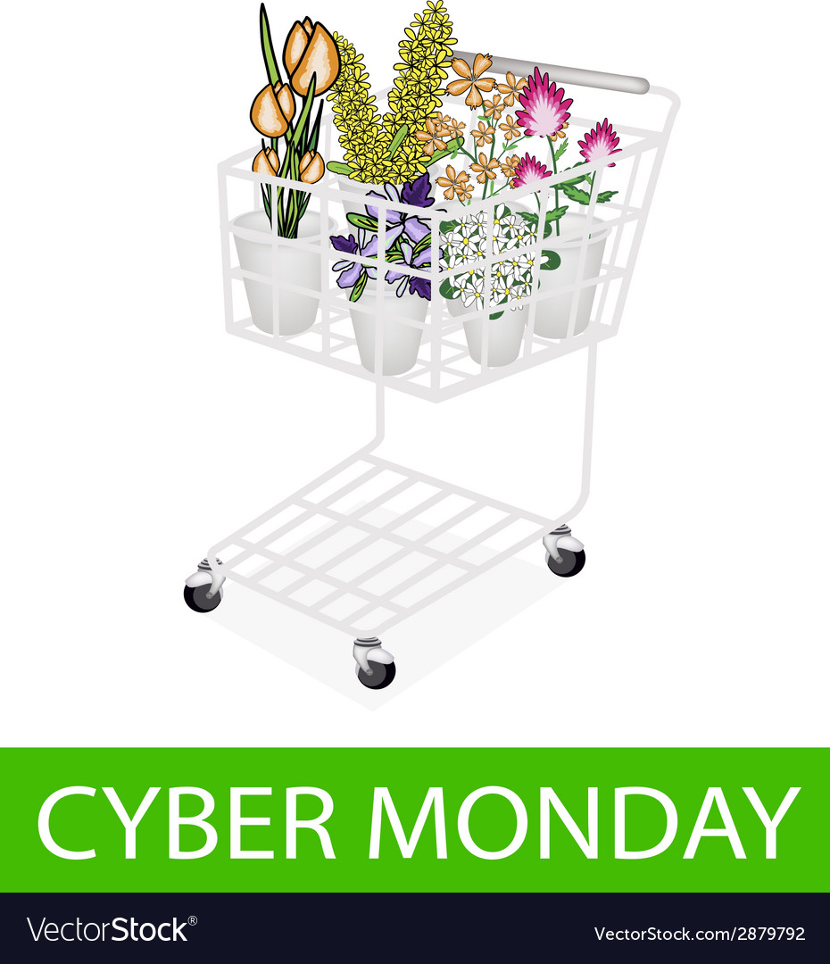 Flower and orchid in cyber monday shopping cart vector | Price: 1 Credit (USD $1)