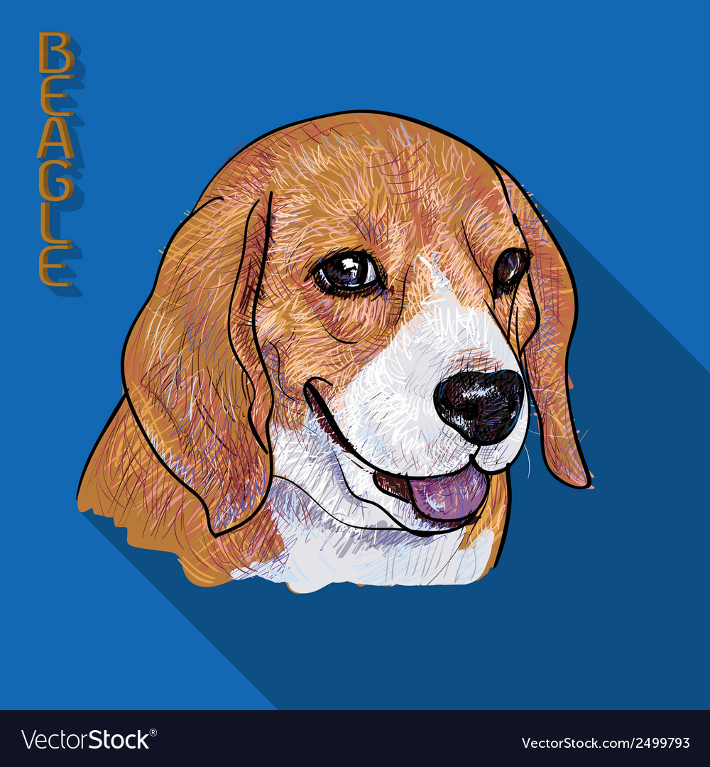 Beagle portrait with long shadow vector | Price: 1 Credit (USD $1)