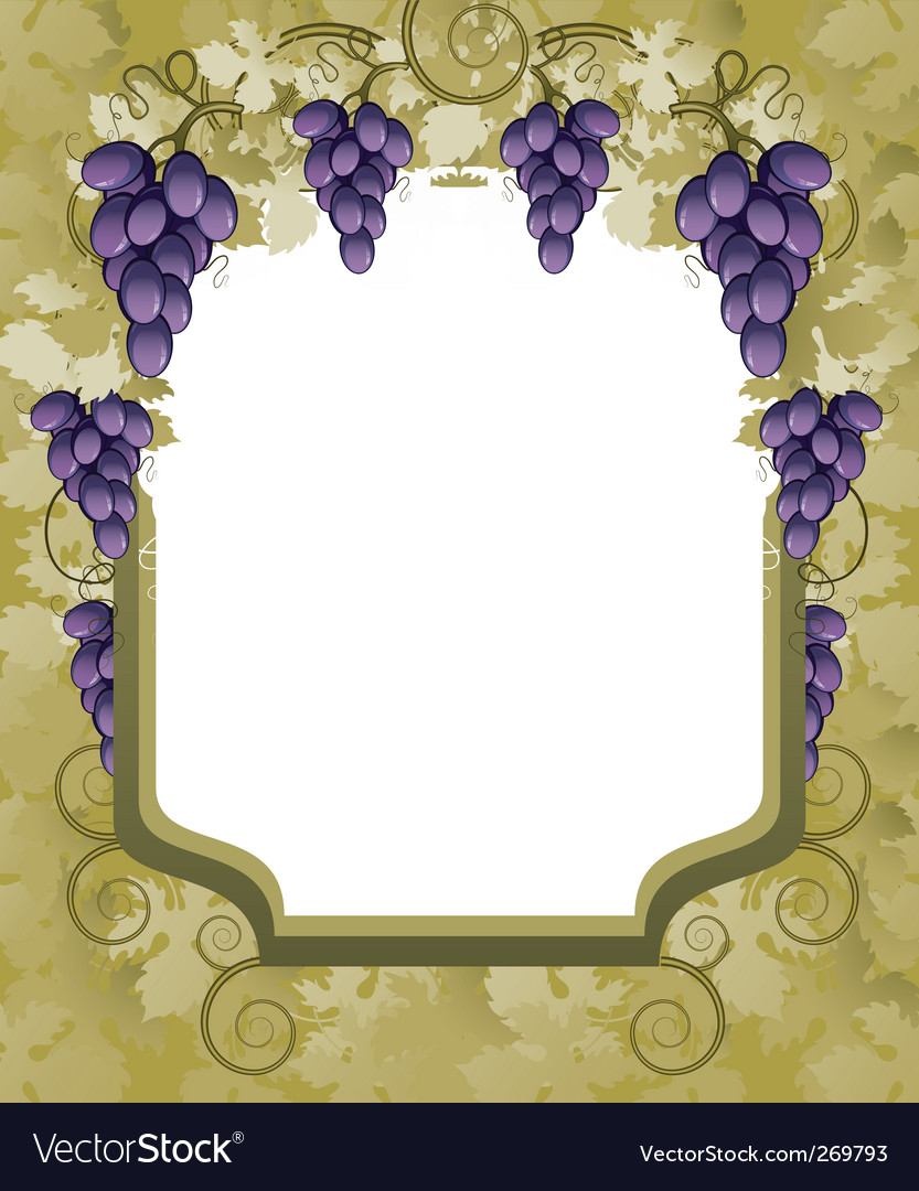 Vineyard border vector | Price: 3 Credit (USD $3)
