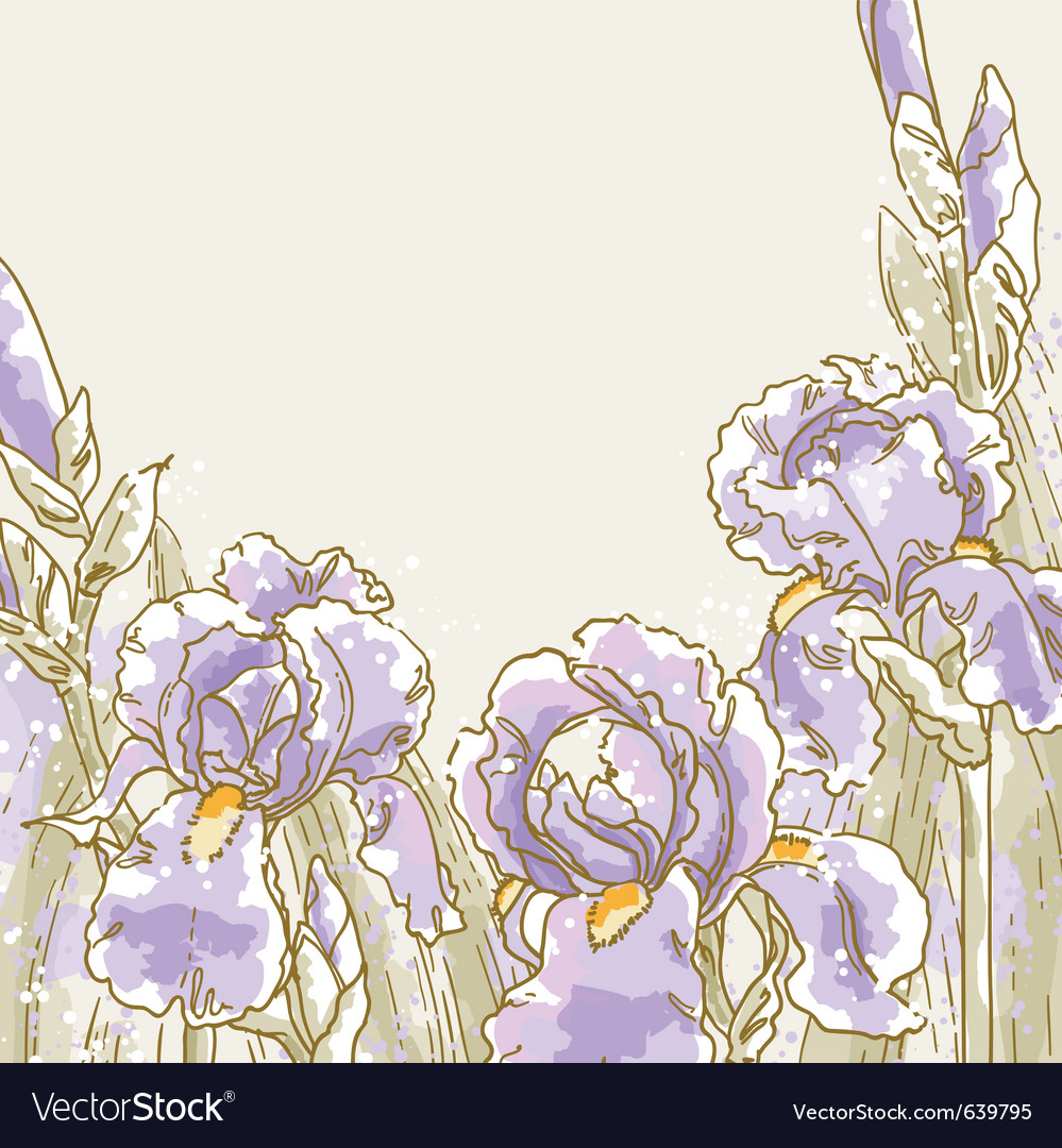 Background with iris flowers vector | Price: 1 Credit (USD $1)