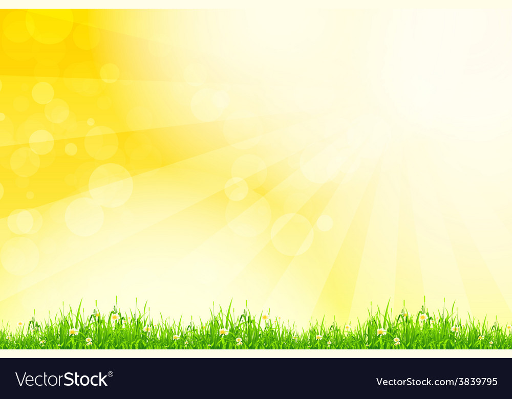 Fresh green grass with yellow bokeh and sunlight vector | Price: 1 Credit (USD $1)