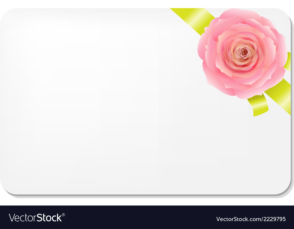 Green bow with rose and blank gift tags vector | Price: 1 Credit (USD $1)
