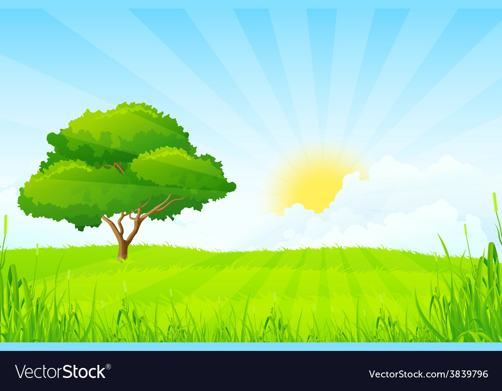Green landscape with clouds and sun and one green vector | Price: 1 Credit (USD $1)
