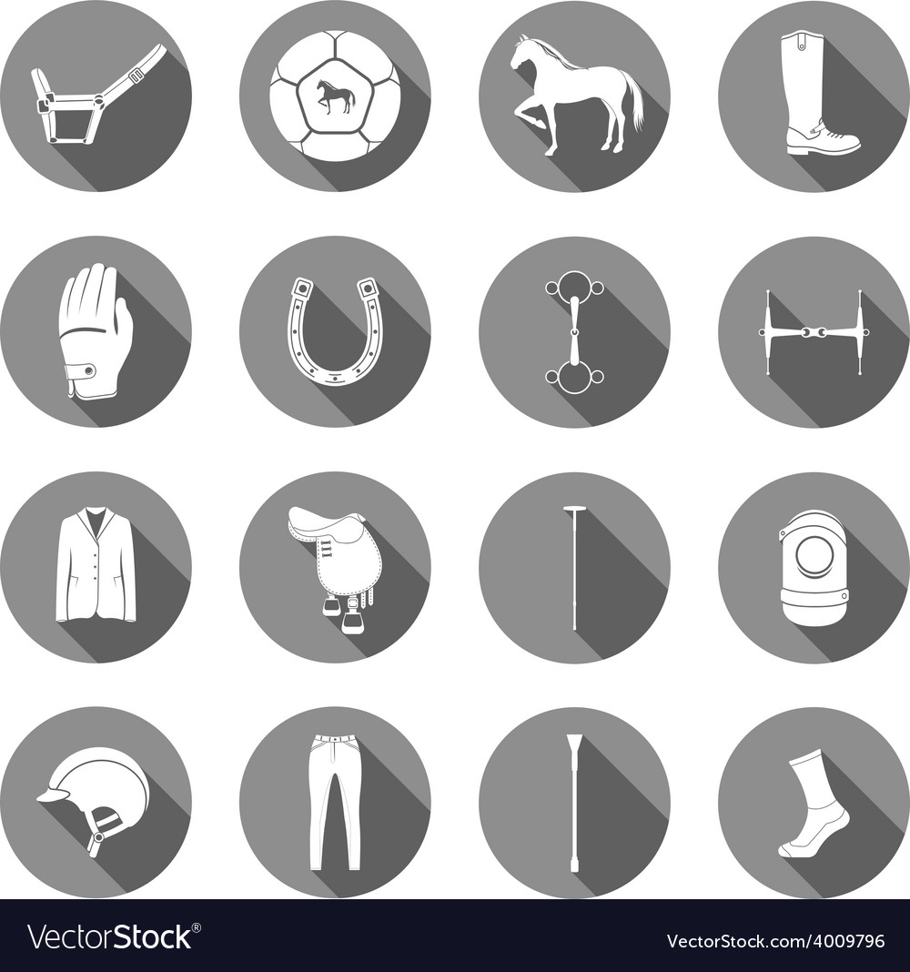 Set of icons and sign of polo vector | Price: 1 Credit (USD $1)