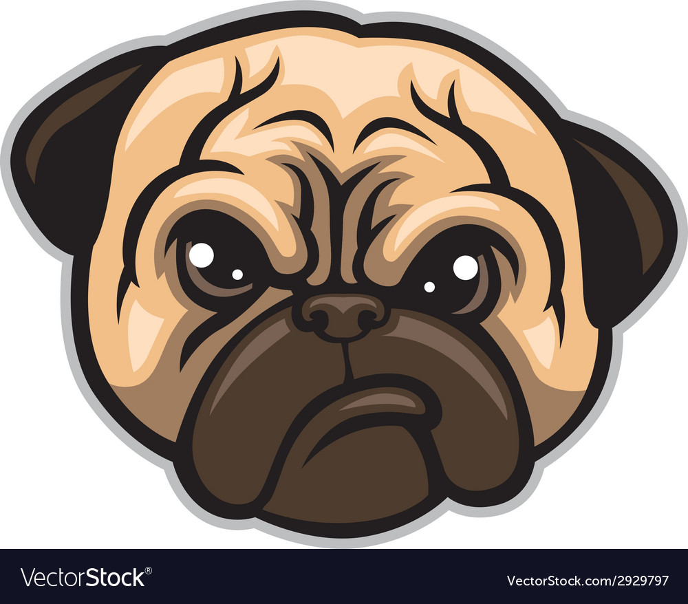 Pug dog head vector | Price: 3 Credit (USD $3)