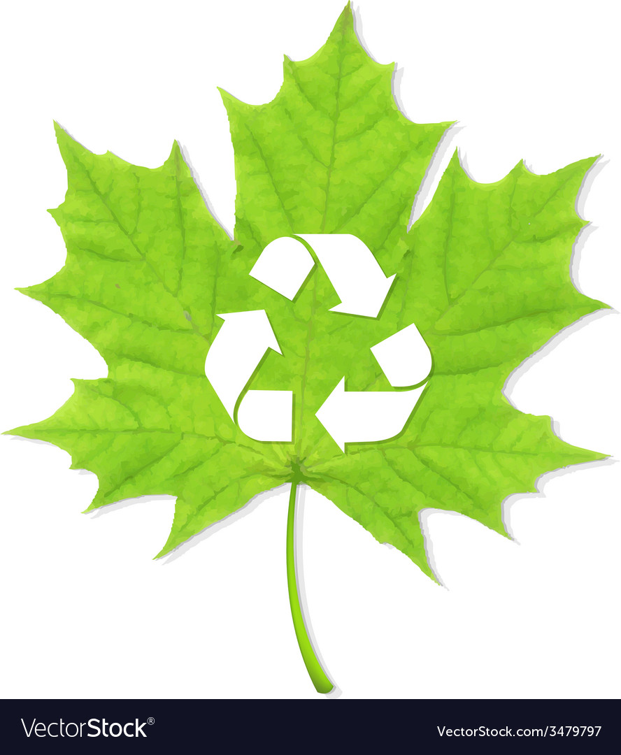 Recycle green leaf vector | Price: 1 Credit (USD $1)