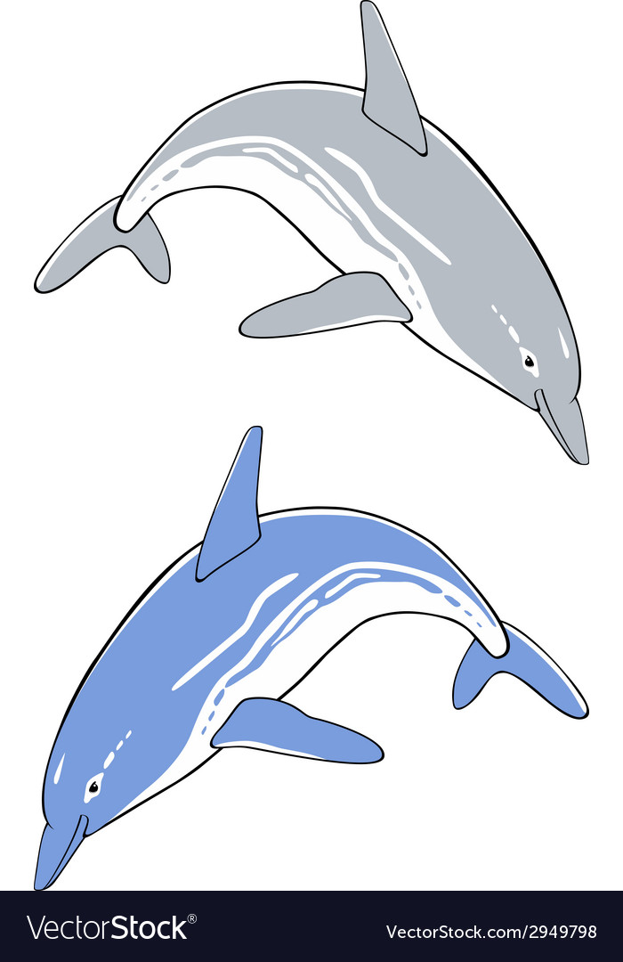 Cute jumping dolphins vector | Price: 1 Credit (USD $1)